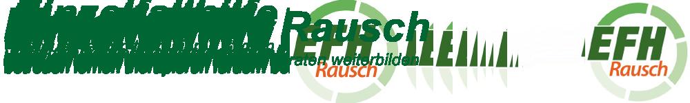 Einzelfallhilfe Rausch GmbH